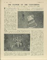 Page 37 of December 1937 issue thumbnail